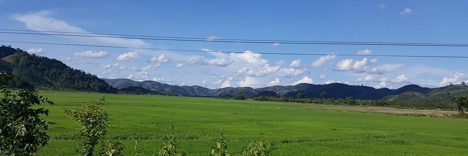 http://gody.vn/blog/nhutpeter3656/post/trai-nghiem-cung-duong-lam-dong-binh-thuan-1010