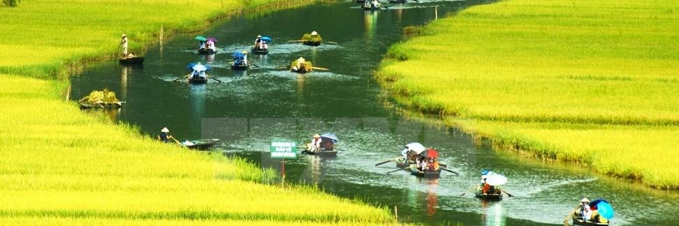 http://gody.vn/blog/review-tour-du-lich-vetham-quan/post/top-7-tour-du-lich-duoc-khach-nuoc-ngoai-lua-chon-nhieu-nhat-tai-viet-nam-1120